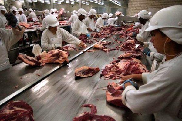 aumento de la carne